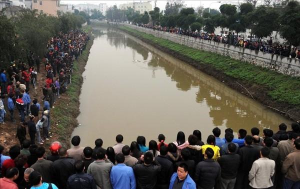 """3月12号,中华白海豚""""老白""""误入佛山内河,引来当地大批村民围观的盛况。 图:腾讯网"""
